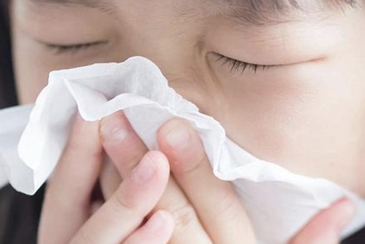 Blueair Do air purifiers help allergies?
