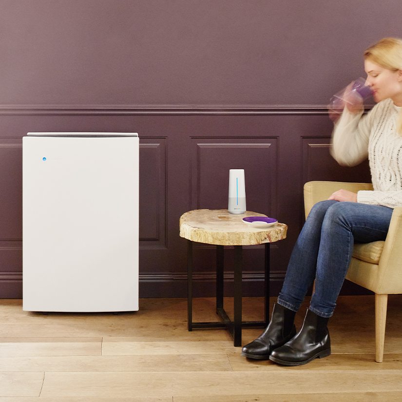 Blueair Pro L air purifier large open spaces
